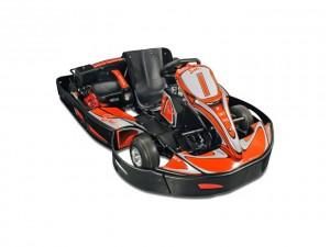 Nos karts sont taillés pour la vitesse et les performances sur la piste.